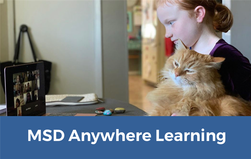 MSD Anywhere Learning